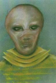 Космическое Раскрытие: Предсмертное откровение Бойда Бушмана 330_29