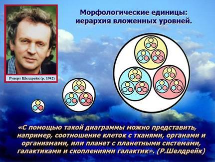 Дэвид Уилкок. Утерянные интервью: Морфические поля и мозг 349_15
