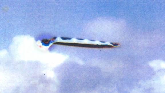 Космическое Раскрытие: Светлой памяти Уильяма Томпкинса: Подрыв доминирования драконийцев 360_5