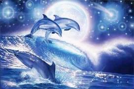 """""""Связь с дельфинами"""". Интервью Дэвида Уилкока с Питом Питерсоном 465_3"""