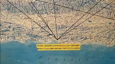 Космическое Раскрытие – 5: Подводные лодки под Америкой. Интервью Эмери Смита с Джоном Лиром 516_13