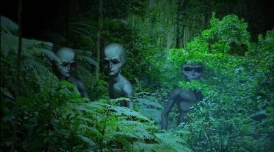 Космическое Раскрытие – 7: Операции по извлечению НЛО во Вьетнаме. Интервью Эмери Смита с Клиффордом Стоуном  531_6