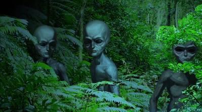 Космическое Раскрытие – 7: Операции по извлечению НЛО во Вьетнаме. Интервью Эмери Смита с Клиффордом Стоуном  531_7